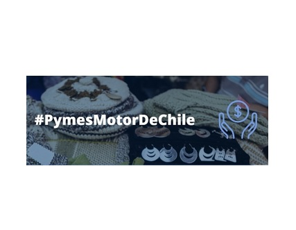 Estado de Chile implementa diferentes apoyos para las Pymes del País